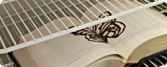 borboleta frigorifico