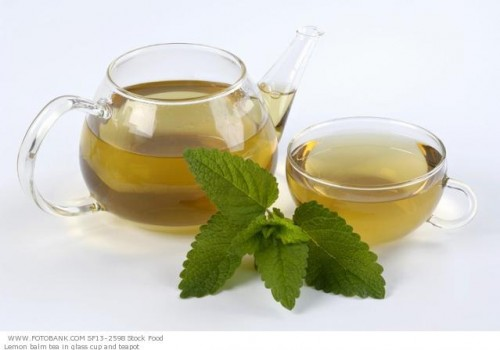 photo-Lemon-balm-tea-e1269628549850